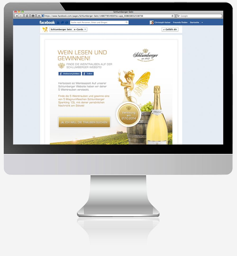C21 Webdesign Facebook Schlumberger