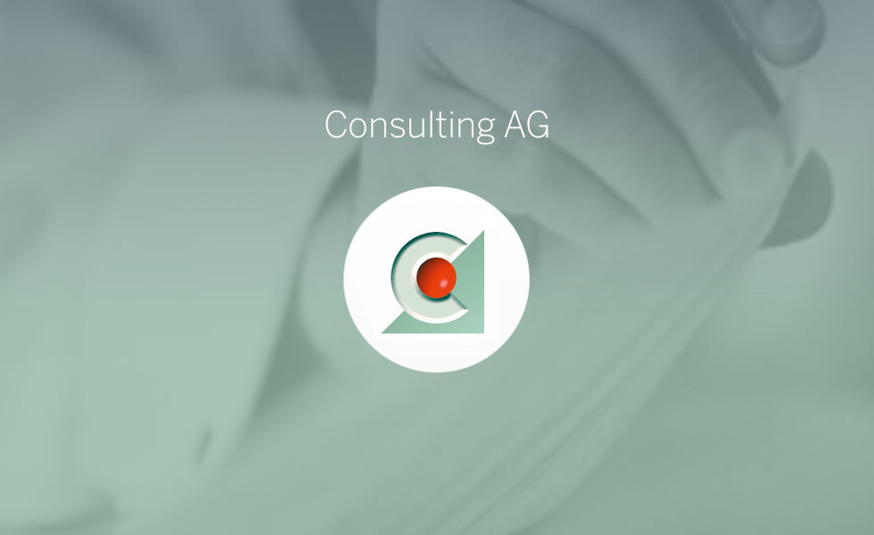 Consulting AG Website C21 new media design Webdesign
