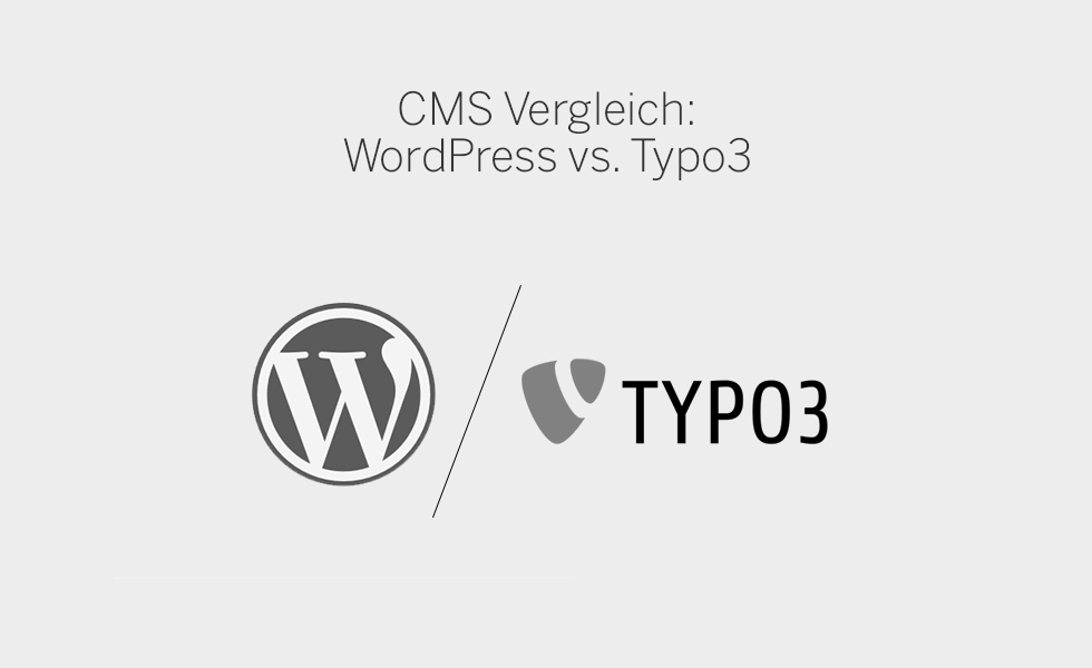 Fact Sheet WordPress Typo3 C21 new media design Graphic Design Werbung Pharma Marketing